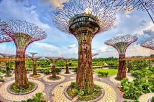 заливните градини, градините на сингапур, супердърветата